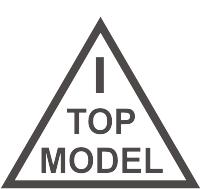 лого топмодел